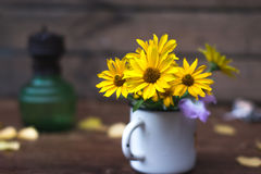 Summer yellow flowers in a white circle still life. Summer yellow flowers in a white circle still life royalty free stock image