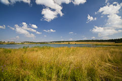 Summer yellow meadow and small lake stock photo