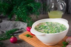 Summer yoghurt cold soup with radish, cucumber, and dill on wooden table. Okroshka.  Royalty Free Stock Images