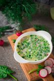 Summer yoghurt cold soup with radish, cucumber, and dill on wooden table. Okroshka.  Royalty Free Stock Image