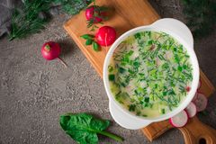 Summer yoghurt cold soup with radish, cucumber, and dill on wooden table. Okroshka.  Royalty Free Stock Photography
