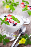Summer Yogurt Stock Photography