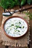 Summer yogurt soup Stock Images