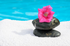 Summer Zen Stock Photos