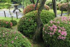 Summer Zen garden Stock Photos