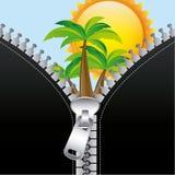 Summer zip. Over sky backgroeund vector illustration Royalty Free Stock Photos