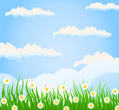Summer3. Grass on a meadow and the blue sky. A  illustration Royalty Free Stock Photography