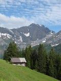 Summerday nelle alpi svizzere Fotografie Stock