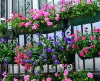 Summerflowers on house window Royalty Free Stock Photo