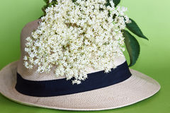 Summerhat with flowers. Summer hat with white elderberry flowers Stock Images