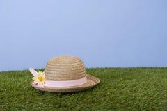 Summerhat mit Gänseblümchen auf Grasfeld lizenzfreies stockbild