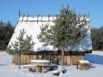 Summerhouse i vinter fotografering för bildbyråer