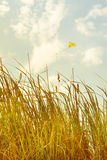 Summerly Childhood Memories. Summery meadow at retro light and a vintage kite at the sky Stock Photography