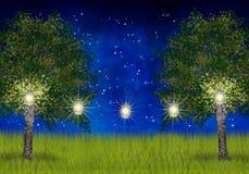 Summernight med lyktor i de trädgårds- träden Royaltyfri Bild