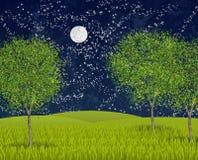 Summernight moonlight Royalty Free Stock Photos