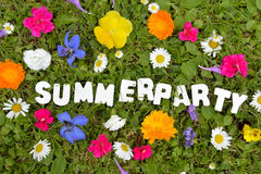 Summerparty text flower Royalty Free Stock Image