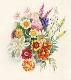Summers Bouquet. Watercolor Painting Summers Bouquet by artist Nadiia Starovoitova Stock Images