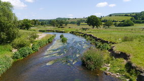 A Summers Day by the River Otter in Devon UK Royalty Free Stock Photos