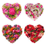 Summers flowers heart floral collage concept. Set of Isolated Summers flowers heart floral collage concept Stock Images