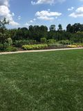 Summers garden. Summers flower garden in state college pennsylvania Royalty Free Stock Image