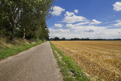 A summers scene. A rural area in summers Royalty Free Stock Photo