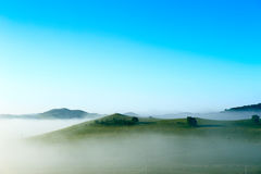The summertid grassland and blue sky Royalty Free Stock Images