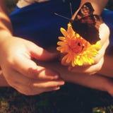 summertime fotografie stock libere da diritti