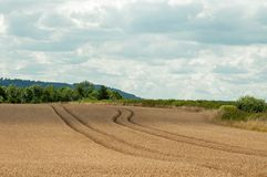 Summertime agricultural scenery in the British countryside. Royalty Free Stock Photo