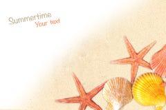 Free Summertime Background Stock Photo - 22866520