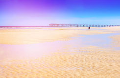 Summertime at the beach Royalty Free Stock Photos