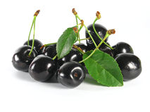 Summertime:  black cherry Stock Photos