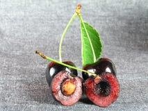Summertime:  black cherry Royalty Free Stock Image