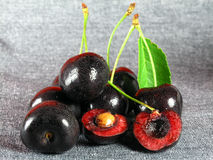 Summertime: black cherry stock image