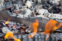 Summertime camp fire Stock Image