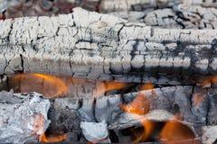 Summertime camp fire Stock Photos