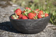 Summertime closeup of unique handmade black bowl of clay and fresh strawberries. Beautiful summertime closeup of unique handmade bowl and fresh strawberries in royalty free stock photos