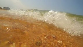 Summertime coast and diving into shallow water. With parts of shells stock video footage