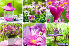 Summertime collage. Collage of different colorful summer images Stock Images