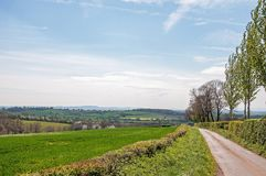 Summertime country road scenery in the Herefordshire countryside. Stock Photo