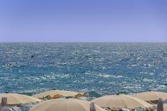 Summertime:desire of sea. Horizon  sea with the wind umbrellas.Apulia,Italy. Stock Image