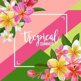 Summertime Floral Poster. Tropical Exotic Plumeria Flowers Design for Banner, Flyer, Brochure, Fabric Print Hello Summer Stock Photo