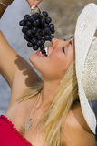 Summertime Grapes royalty free stock photos