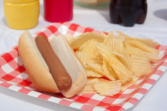 Summertime Hotdog Royalty Free Stock Photo