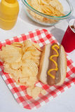 Summertime Hotdog Royalty Free Stock Images