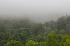 Summertime landscape of Bieszczady Mountain range with mist rain after Royalty Free Stock Images