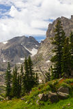 Summertime Landscape in the Colorado Rockies Royalty Free Stock Photos