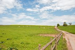 Summertime landscape scenery in the Herefordshire countryside. Royalty Free Stock Image
