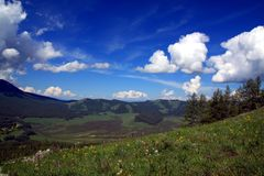 Summertime in the mountains. Summertime in Kanas Nature Reserve, Xinjiang Province, China Royalty Free Stock Photography