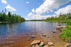 Summertime in the North Woods Royalty Free Stock Images