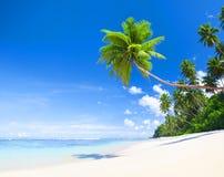 Summertime Outdoors Nature Beach Concept.  Stock Photo